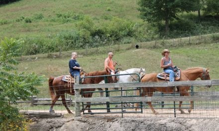 Crystal Creek Ranch Horseback Riding