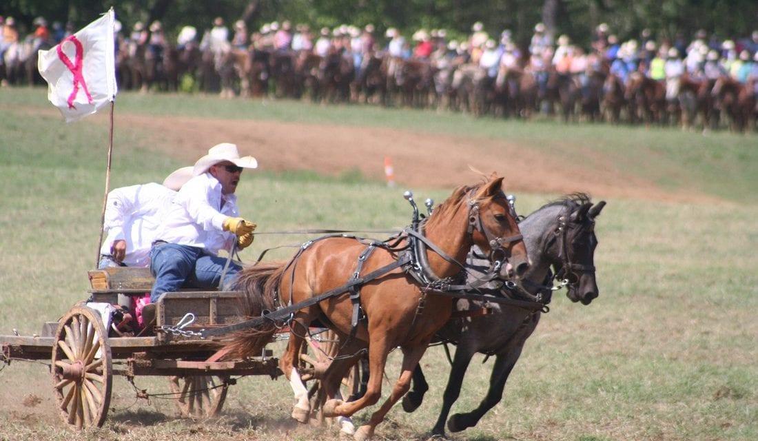 Bearcreek Bash Chuckwagon Races