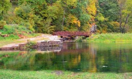 Keener Springs Recreation Area