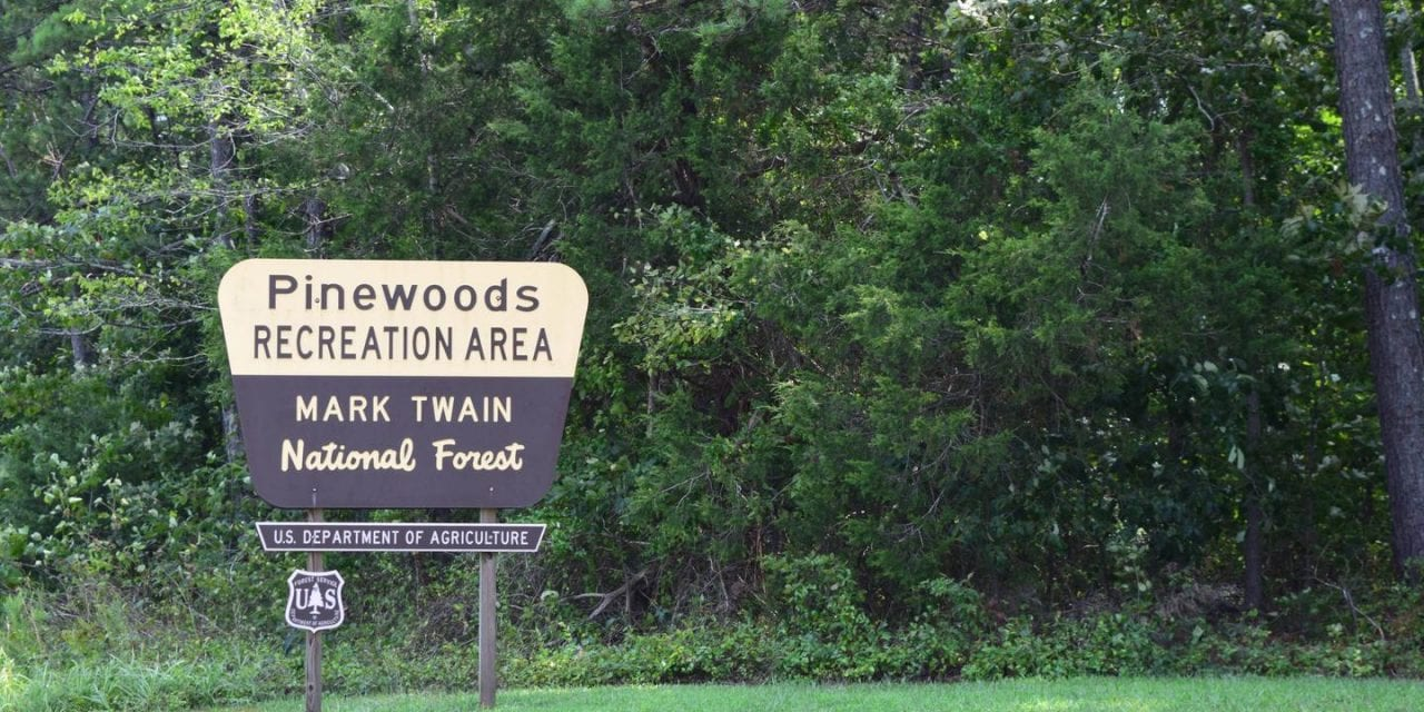Pinewoods Lake Recreation Area