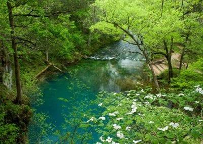 Blue Springs by Mark Pelton